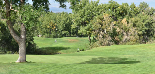 A sunny day view of a hole from Nine Hole at South Suburban Golf Course.
