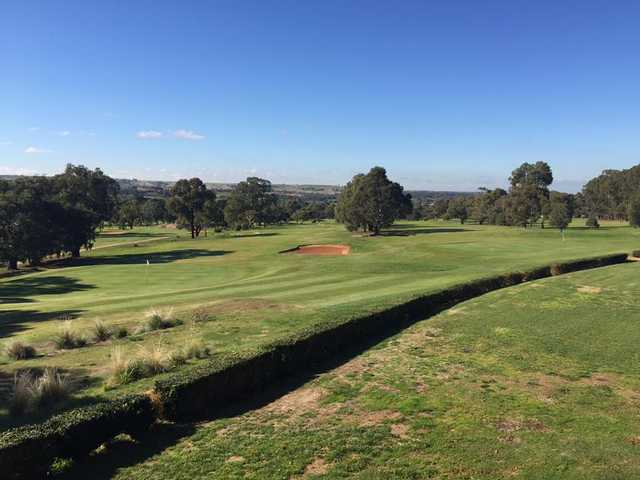 View of a green at Bacchus Marsh Golf Club.