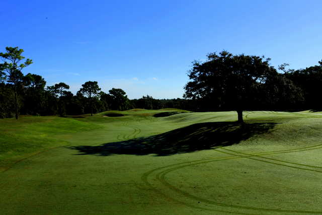 A sunny day view from a fairway at Twisted Oaks Golf Club.