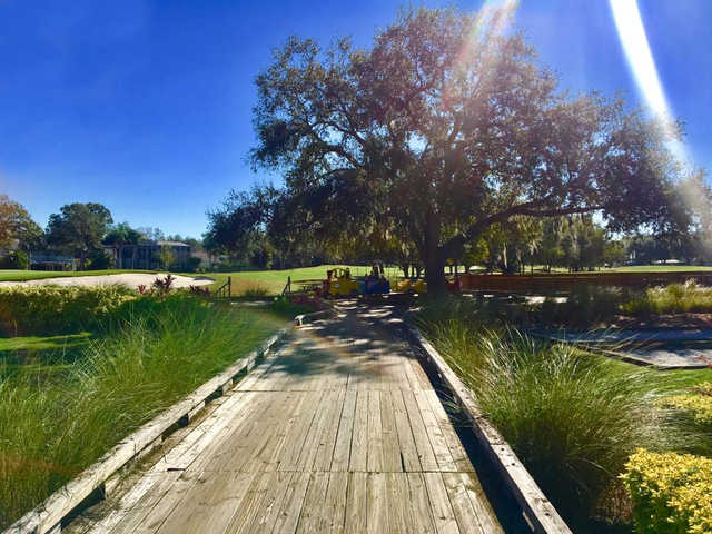 A view from a bridge at Carrollwood Country Club.