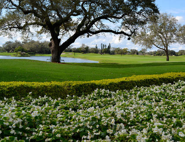 A view from Grande Oaks Golf Club.