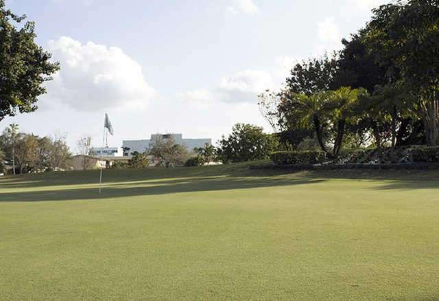 A view of the 1st green at Miami Springs Golf & Country Club.