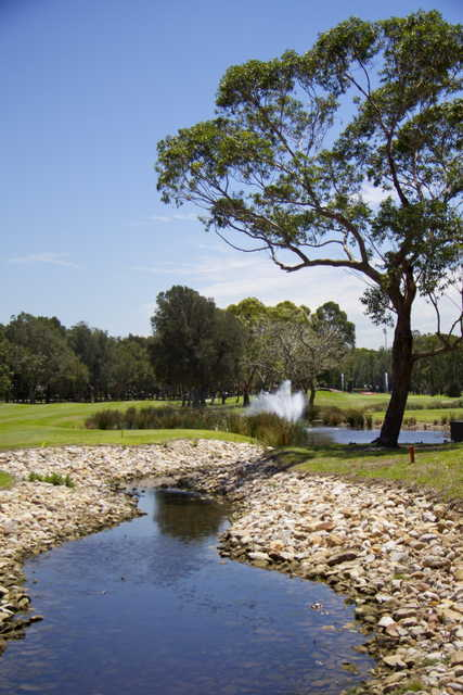 A view from Beverley Park Golf Club