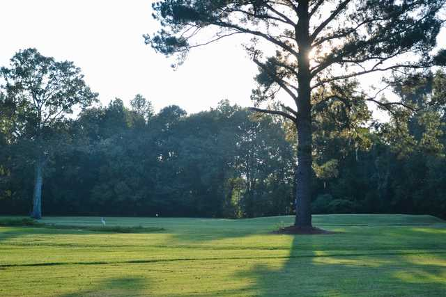 View of a green at The Pines at North Park