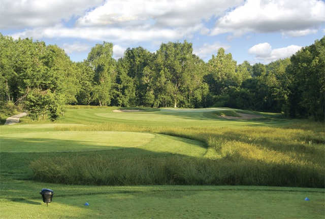 A view from a tee at Championship Course from Drumm Farm Golf Club (Tee Times Golf Guide Inc).