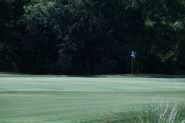 A view of a hole at the Golf Club At Fleming Island.