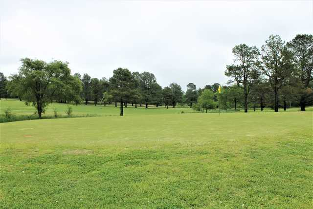 A view of a green at Sycamore Hills Country Club.