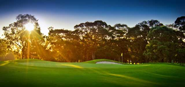View of a green at Bankstown Golf Club