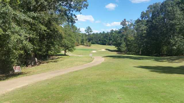 A sunny day view of a tee from Bull Creek Golf Course (Mike Radar Daniel).