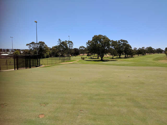 A view from Barmera Golf Club