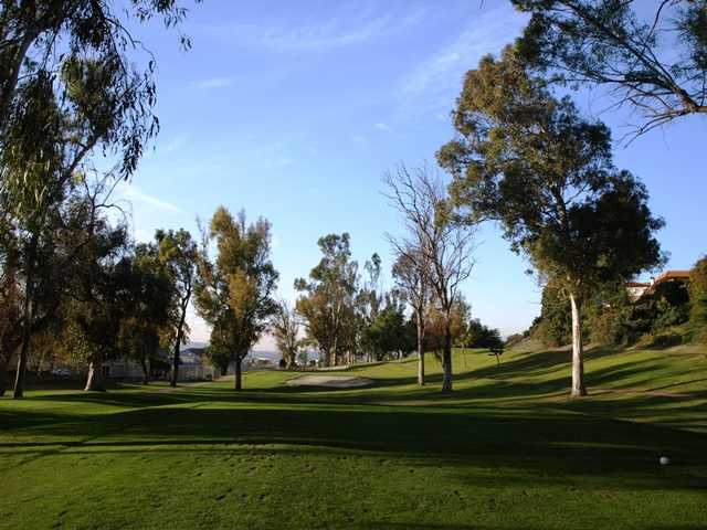 The short par-3 seventh on the South Course at Royal Vista is made difficult by overhanging limbs of nearby trees.