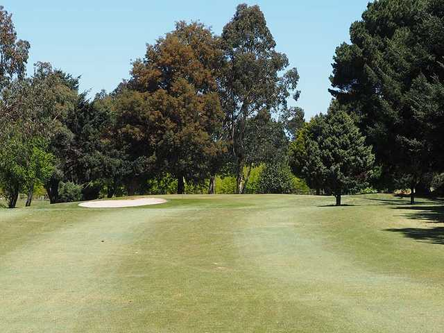 A view of the 18th hole at Trentham Golf Club.