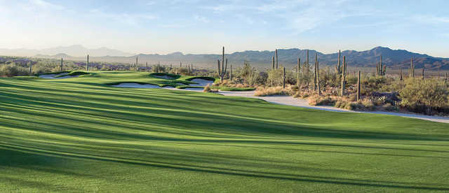 View of a green from The Golf Club at Dove Mountain Wild Burro Course
