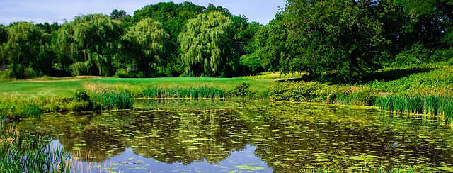 A view over a pond at Blue Fox Run Golf Course.