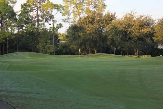 A view of a hole at Cypress Woods Golf & Country Club.