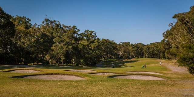 Newcastle Golf Club landscape image