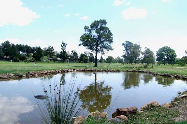 View from Gatton Jubilee Golf Club