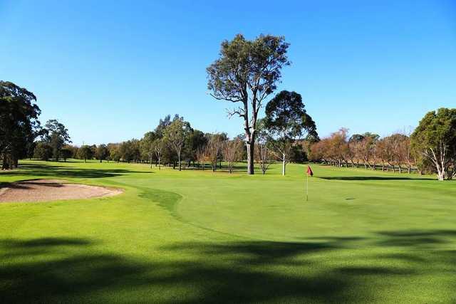 Moruya Golf Club's 8th green