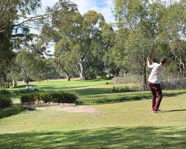 Golfer on Little Para Par 3 Golf Course