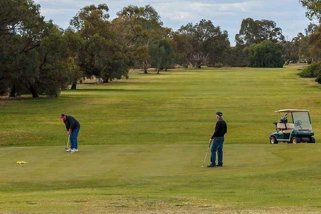 Golfers at Barmera Golf Club