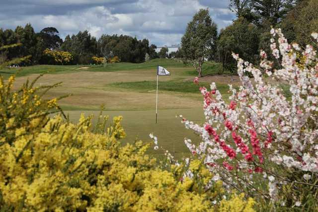 Ballarat Golf Club green flowers