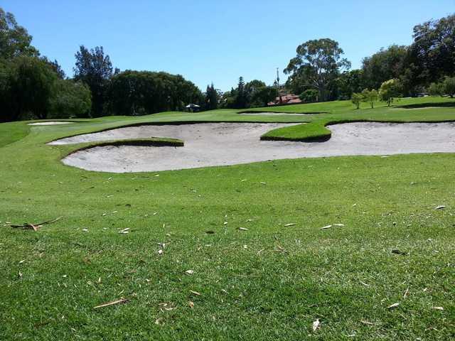 Bunkered green at Royal Perth Golf Club.