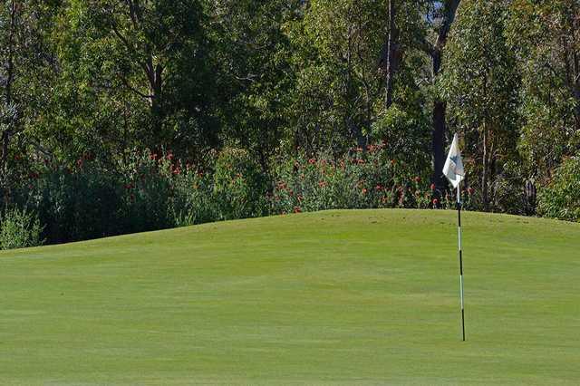 View of a green at Araluen Golf Resort.