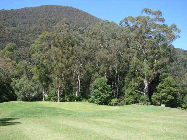 View of a green at Warburton Golf Club.