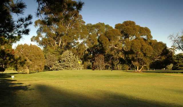 View from Benalla Golf Club