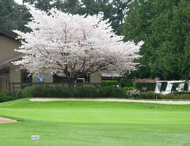A view of a hole protected by a blossom tree at Peace Portal Golf Club.