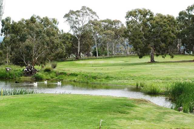 View from Cooma Golf Club