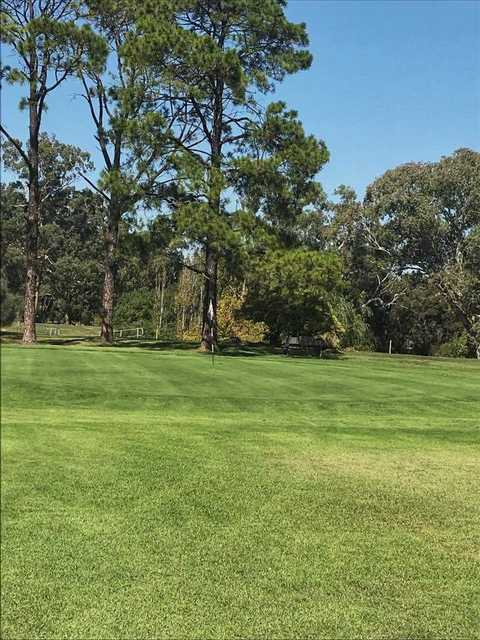 View from Muswellbrook Golf Club
