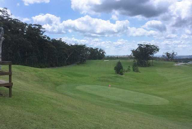 Mangrove Mountain Course