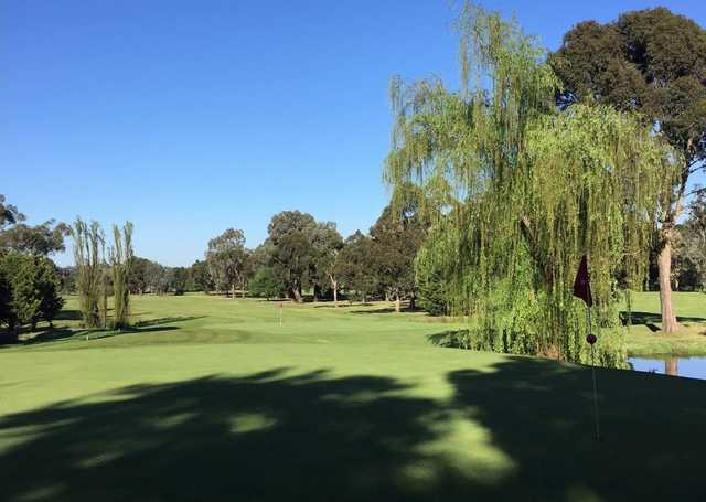 View from a green at Whittlesea Country Club.