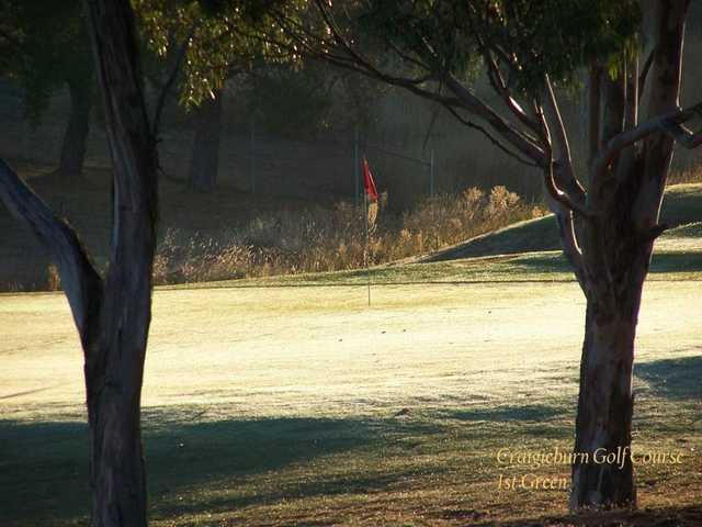 View of a green at Craigieburn Public Golf Course.
