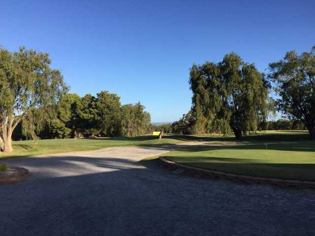 View from Barossa Valley Golf Club