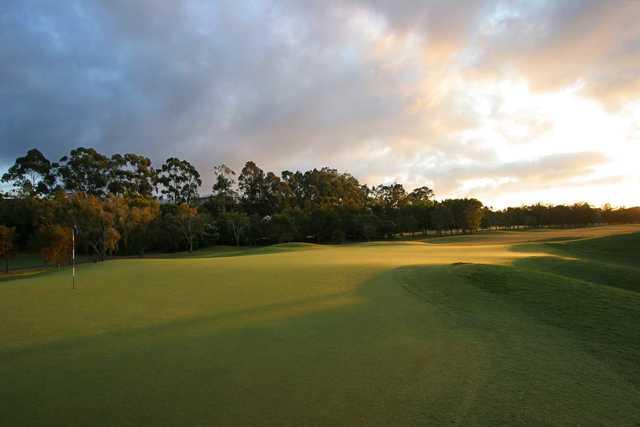 Palmer Gold Coast's 13th