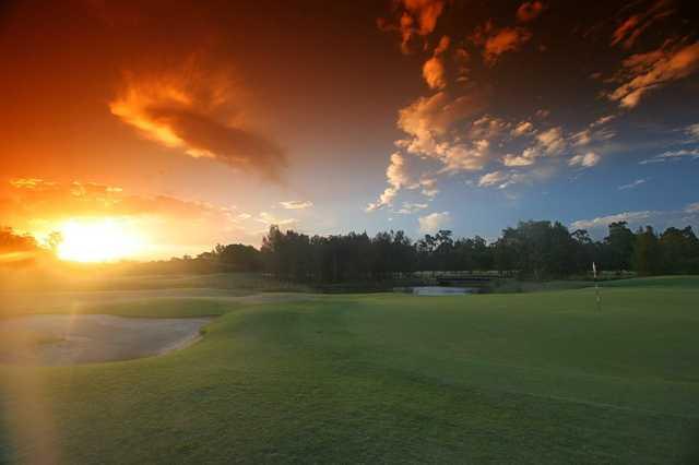 Palmer Gold Coast's 14th