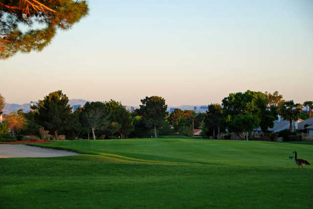 Looking back from the 18th green at Los Prados Golf Course.