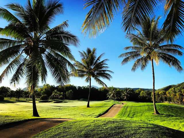 A view of the palm trees between fairway #16 and #17 at Palmer Sea Reef.
