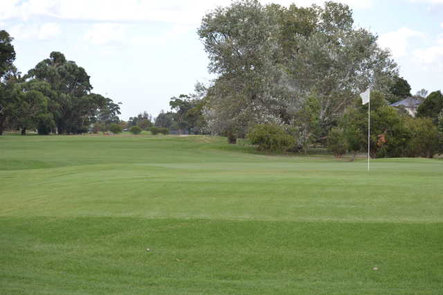 A view of a hole at Rossdale Golf Club.