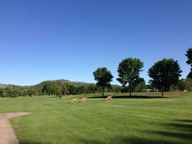 A view of a fairway at Meadowbrook Golf Course.