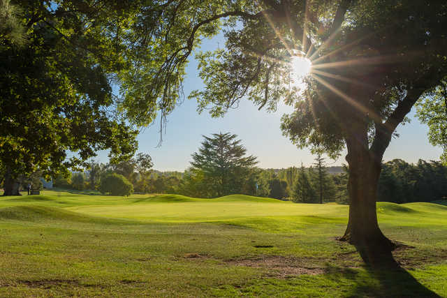 A sunny day view of a hole at Duntryleague Golf Club.