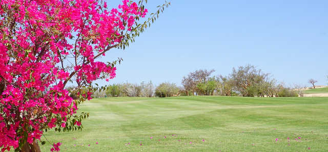 A view from One&Only Palmilla Golf Club.