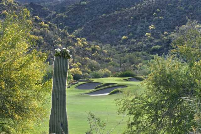 View of the 14th hole from the North course at Gallery Golf Club.