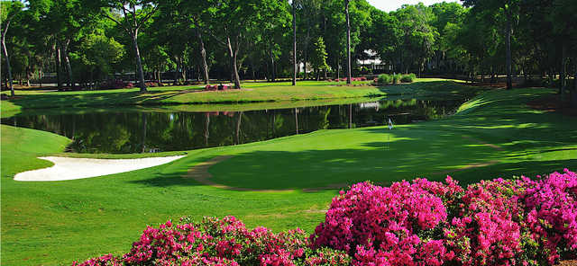 A sunny day view of a green at Bruce Borland Course from Colleton River Club.