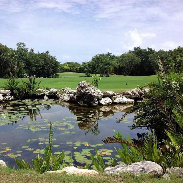 A view from Puerto Aventuras Golf & Racquet Club.