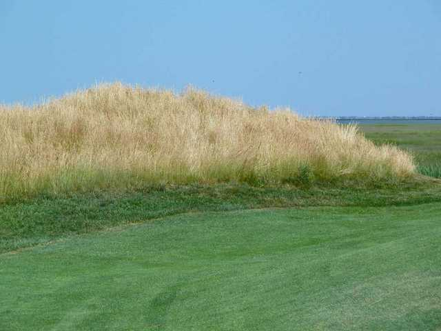 The bunkers on the Bay Course at Seaview resort are lined with thick fescue grasses.