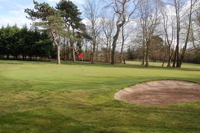 View of the 8th green at Ormeau Golf Club.
