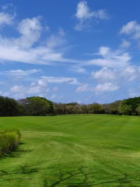 A view from Guavaberry Golf & Country Club.